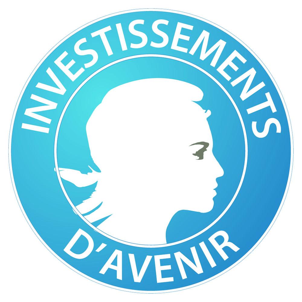 Investissements_d'avenir_-_logo.jpeg
